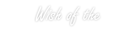 wish of the skyelevator